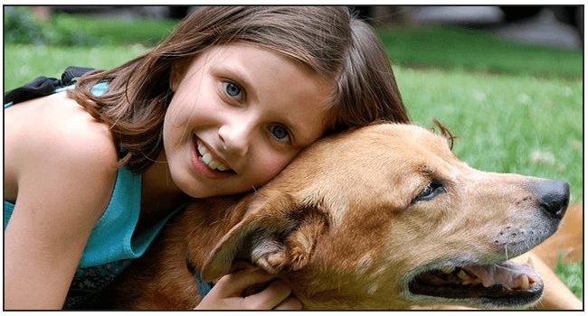 Best Insurance Plan For Dogs