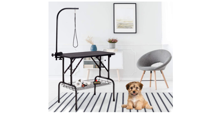 Best Dog Grooming Table Buying Guide