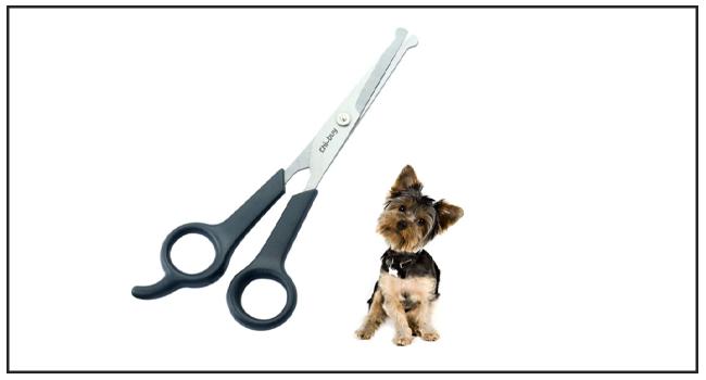 Chibuy Best Dog Grooming Scissors