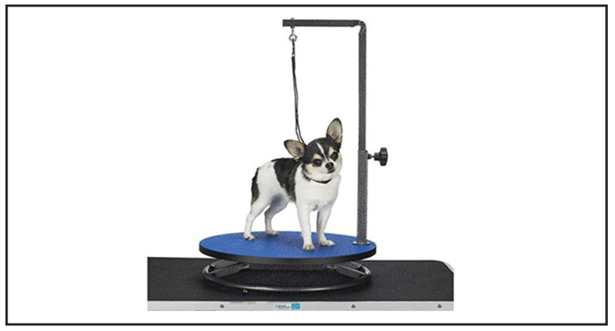 Master Equipment Best Dog Grooming Table