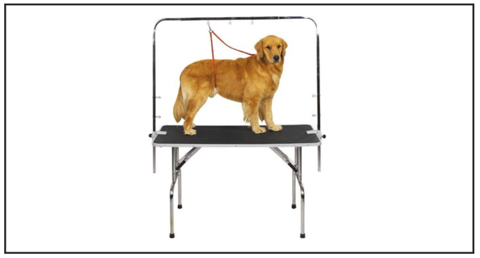 Master Equipment Zinc-Plated Best Dog Grooming Table