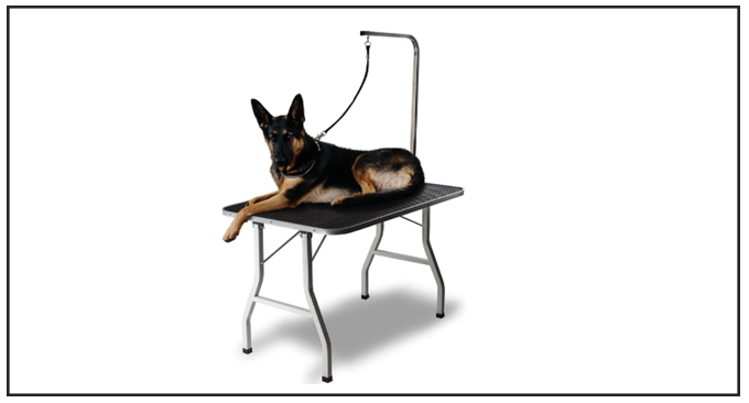 Paws and Pals Best Dog Grooming Table